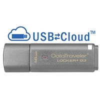 USB Flash Drives | KINGSTON Locker+ G3 16GB | DTLPG3/16GB | ServersPlus